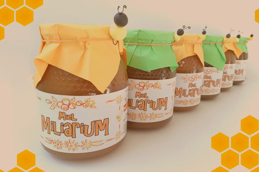 Venta de miel en torrejón | Cafeteria Mayri